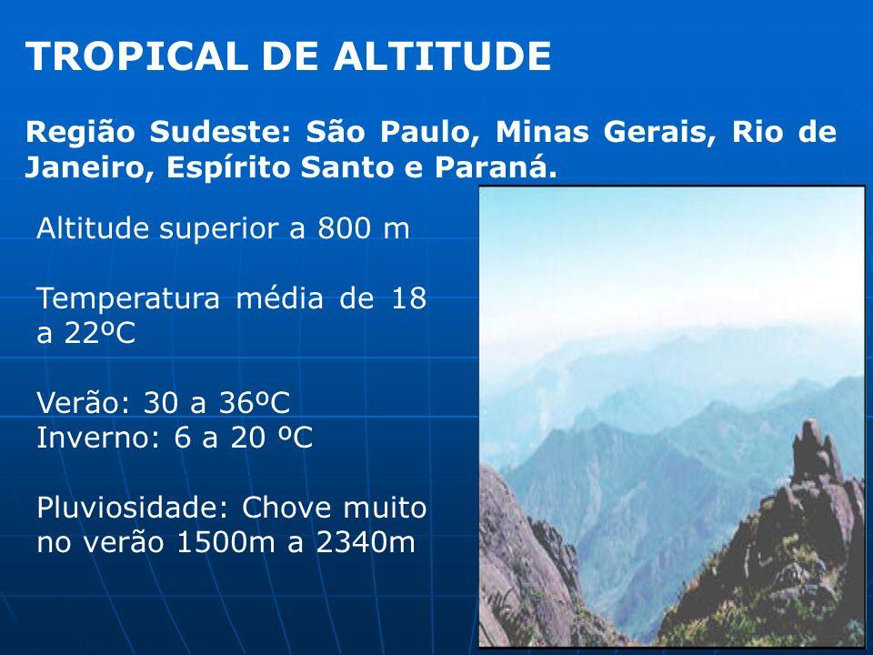 TROPICAL DE ALTITUDE Região Sudeste: São Paulo, Minas Gerais, Rio de Janeiro, Espírito Santo e Paraná. Altitude superior a 800 m Temperatura média de