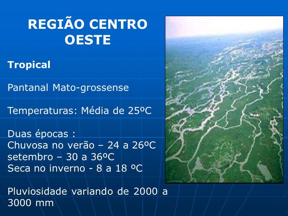 REGIÃO CENTRO OESTE Tropical Pantanal Mato-grossense Temperaturas: Média de 25ºC Duas épocas : Chuvosa no verão – 24 a 26ºC setembro – 30 a 36ºC Seca