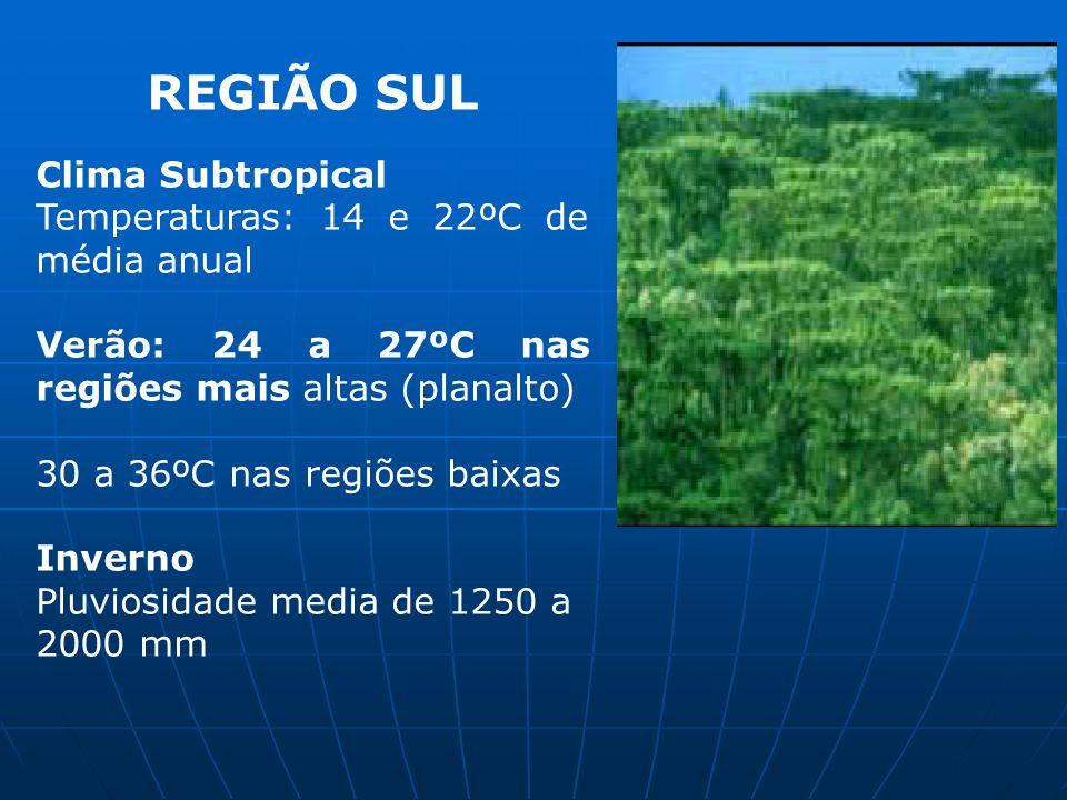 REGIÃO SUL Clima Subtropical Temperaturas: 14 e 22ºC de média anual Verão: 24 a 27ºC nas regiões mais altas (planalto) 30 a 36ºC nas regiões baixas In