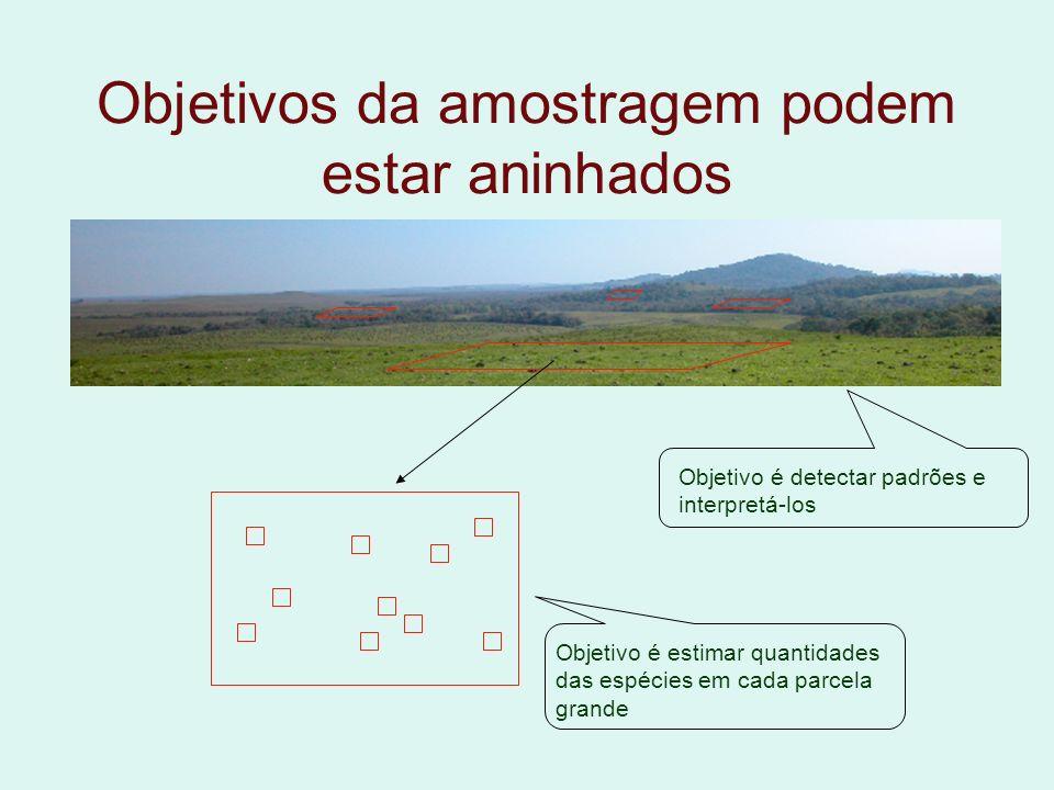 Objetivos da amostragem podem estar aninhados Objetivo é estimar quantidades das espécies em cada parcela grande Objetivo é detectar padrões e interpr