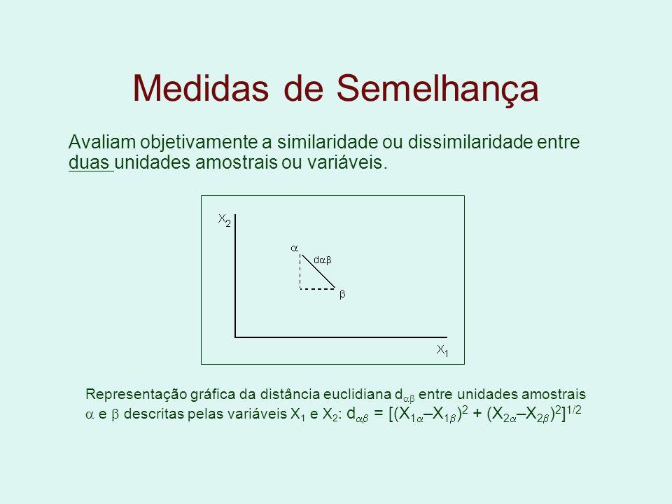 Medidas de Semelhança Avaliam objetivamente a similaridade ou dissimilaridade entre duas unidades amostrais ou variáveis. Representação gráfica da dis
