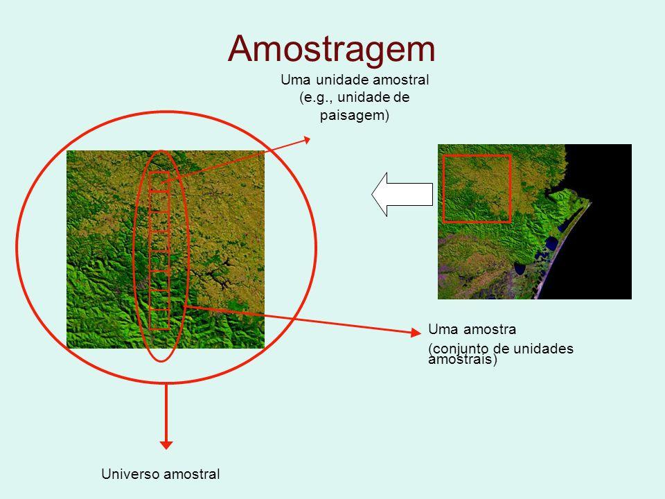 Amostragem Universo amostral Uma amostra (conjunto de unidades amostrais) Uma unidade amostral (e.g., unidade de paisagem)