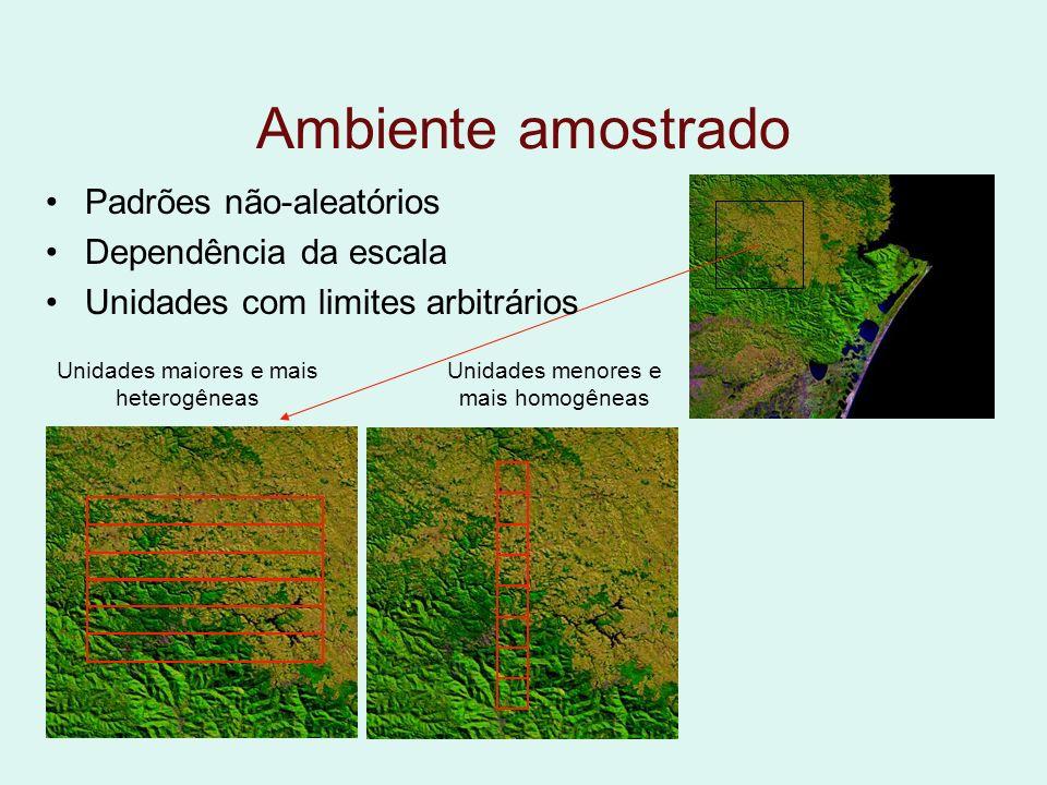 Ambiente amostrado Padrões não-aleatórios Dependência da escala Unidades com limites arbitrários Unidades maiores e mais heterogêneas Unidades menores