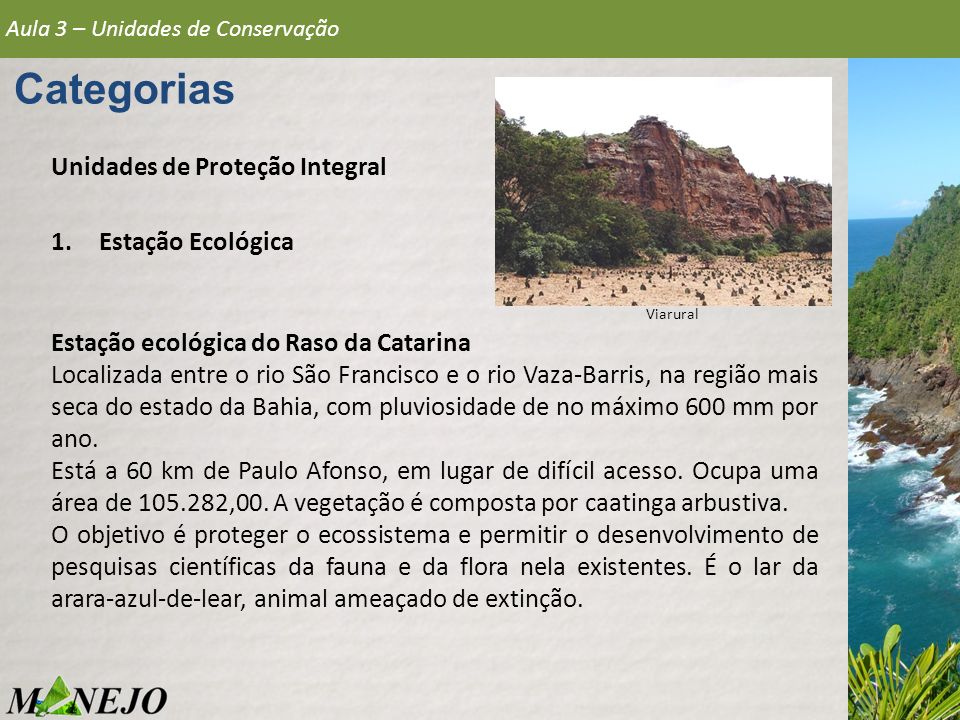 Aula 3 – Unidades de Conservação Categorias Unidades de Proteção Integral 1.Estação Ecológica Estação ecológica do Raso da Catarina Localizada entre o