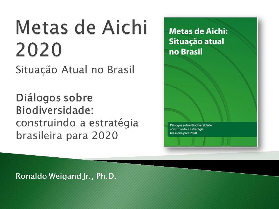 Situação Atual no Brasil Diálogos sobre Biodiversidade: construindo a estratégia brasileira para 2020 Ronaldo Weigand Jr., Ph.D.