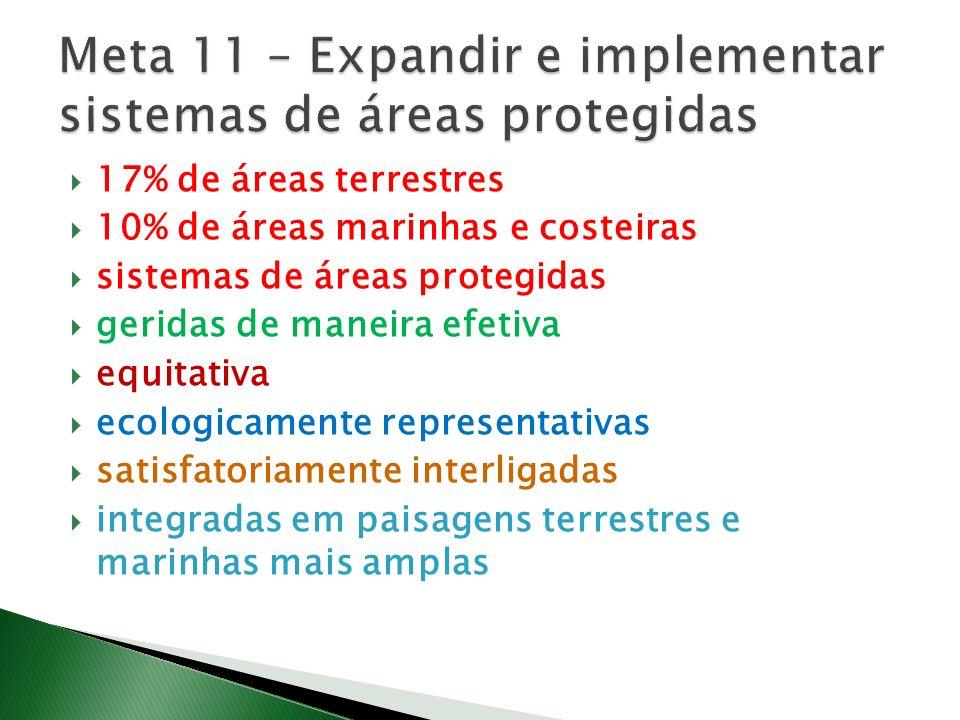 17% de áreas terrestres 10% de áreas marinhas e costeiras sistemas de áreas protegidas geridas de maneira efetiva equitativa ecologicamente representativas satisfatoriamente interligadas integradas em paisagens terrestres e marinhas mais amplas