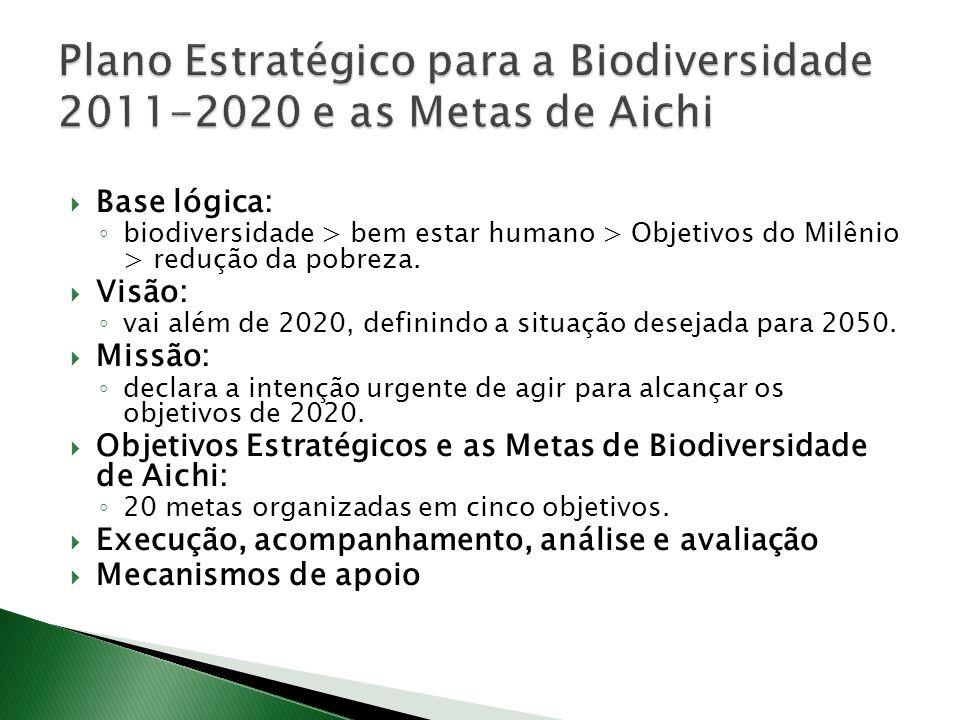 Base lógica: biodiversidade > bem estar humano > Objetivos do Milênio > redução da pobreza. Visão: vai além de 2020, definindo a situação desejada par