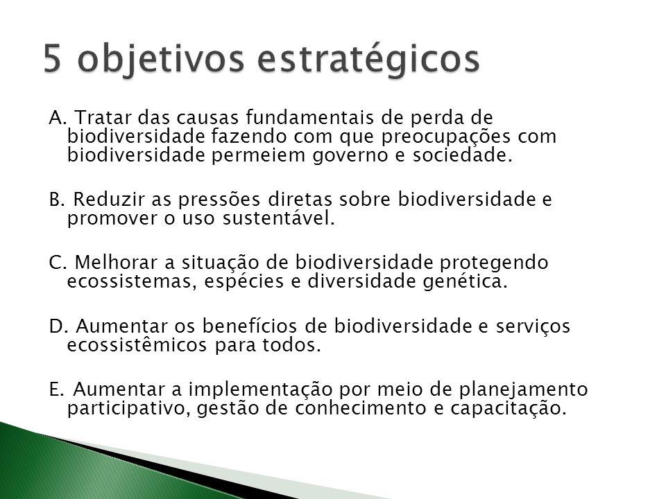 A. Tratar das causas fundamentais de perda de biodiversidade fazendo com que preocupações com biodiversidade permeiem governo e sociedade. B. Reduzir
