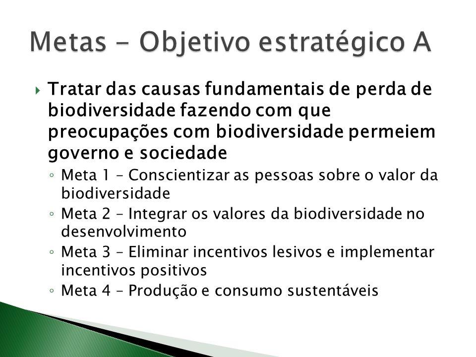 Tratar das causas fundamentais de perda de biodiversidade fazendo com que preocupações com biodiversidade permeiem governo e sociedade Meta 1 – Conscientizar as pessoas sobre o valor da biodiversidade Meta 2 – Integrar os valores da biodiversidade no desenvolvimento Meta 3 – Eliminar incentivos lesivos e implementar incentivos positivos Meta 4 – Produção e consumo sustentáveis