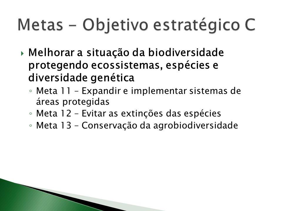 Melhorar a situação da biodiversidade protegendo ecossistemas, espécies e diversidade genética Meta 11 – Expandir e implementar sistemas de áreas protegidas Meta 12 – Evitar as extinções das espécies Meta 13 – Conservação da agrobiodiversidade