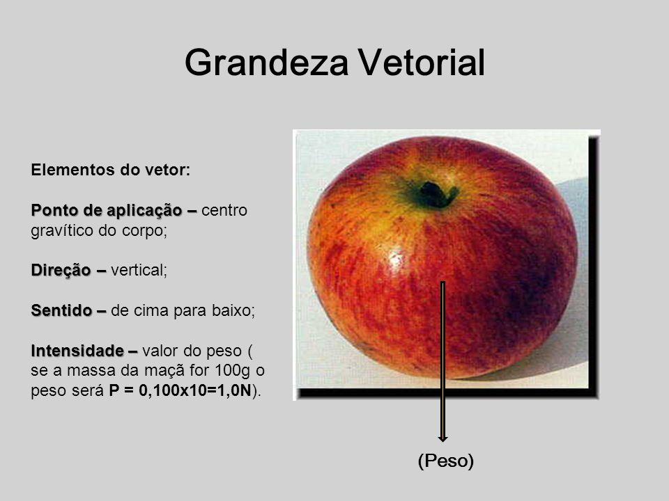 Grandeza Vetorial (Peso) Elementos do vetor: Ponto de aplicação – Ponto de aplicação – centro gravítico do corpo; Direção – Direção – vertical; Sentido – Sentido – de cima para baixo; Intensidade – Intensidade – valor do peso ( se a massa da maçã for 100g o peso será P = 0,100x10=1,0N).