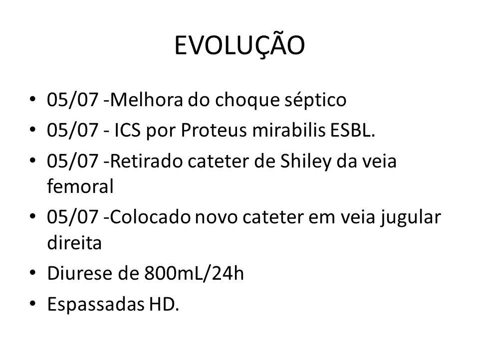 EVOLUÇÃO 05/07 -Melhora do choque séptico 05/07 - ICS por Proteus mirabilis ESBL.