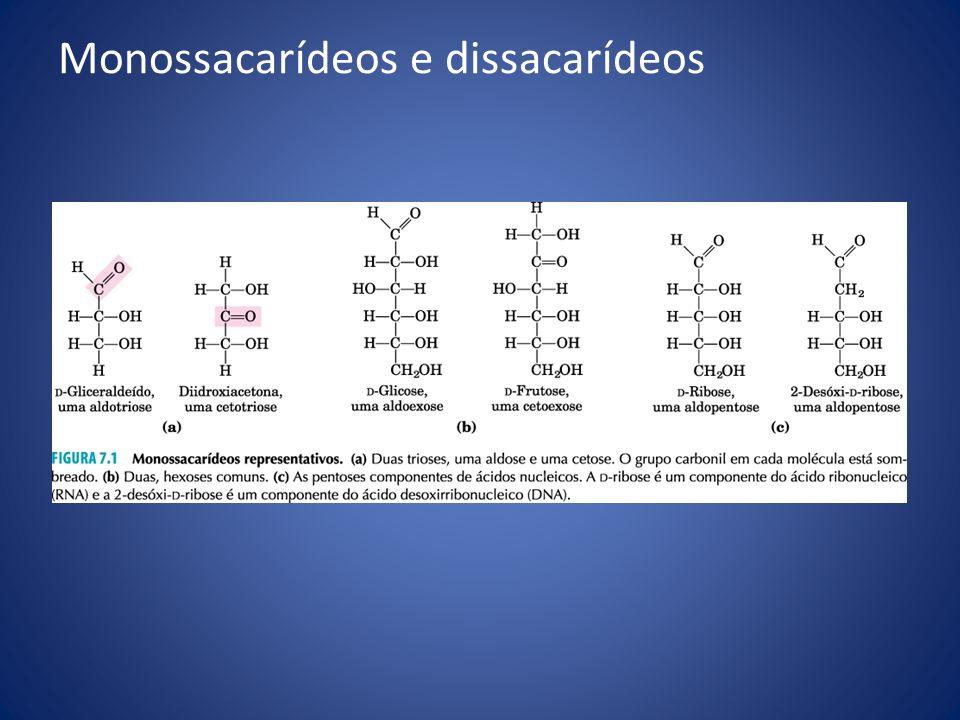Monossacarídeos e dissacarídeos