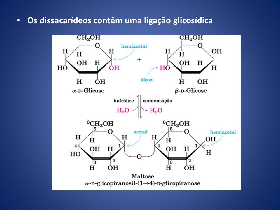 Carboidratos como moléculas informativas: o código dos açúcares