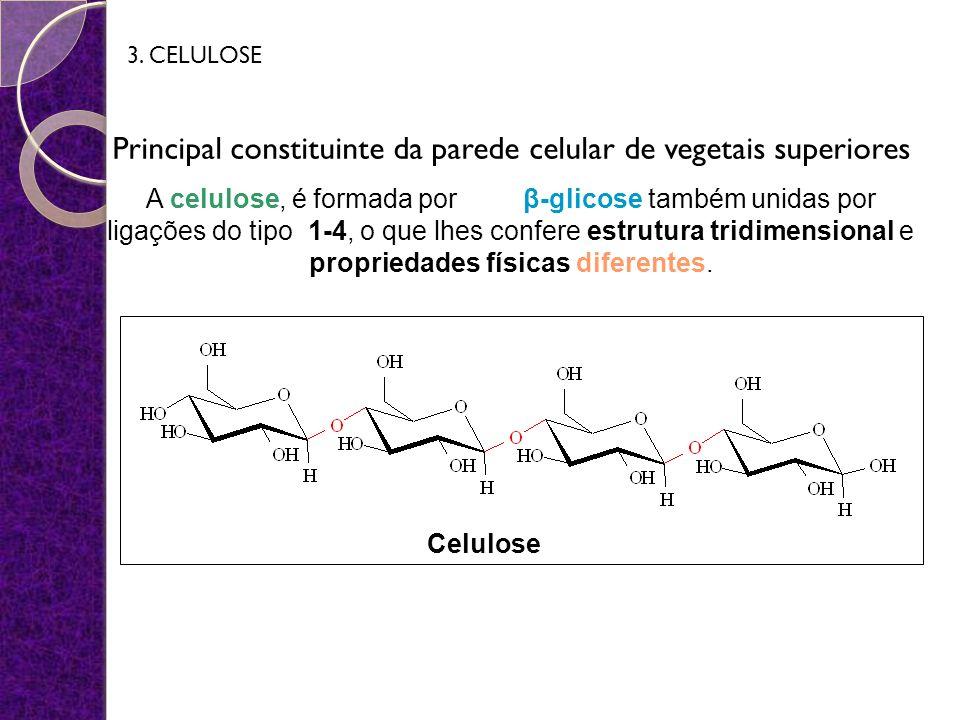 Principal constituinte da parede celular de vegetais superiores A celulose, é formada por β-glicose também unidas por ligações do tipo 1-4, o que lhes