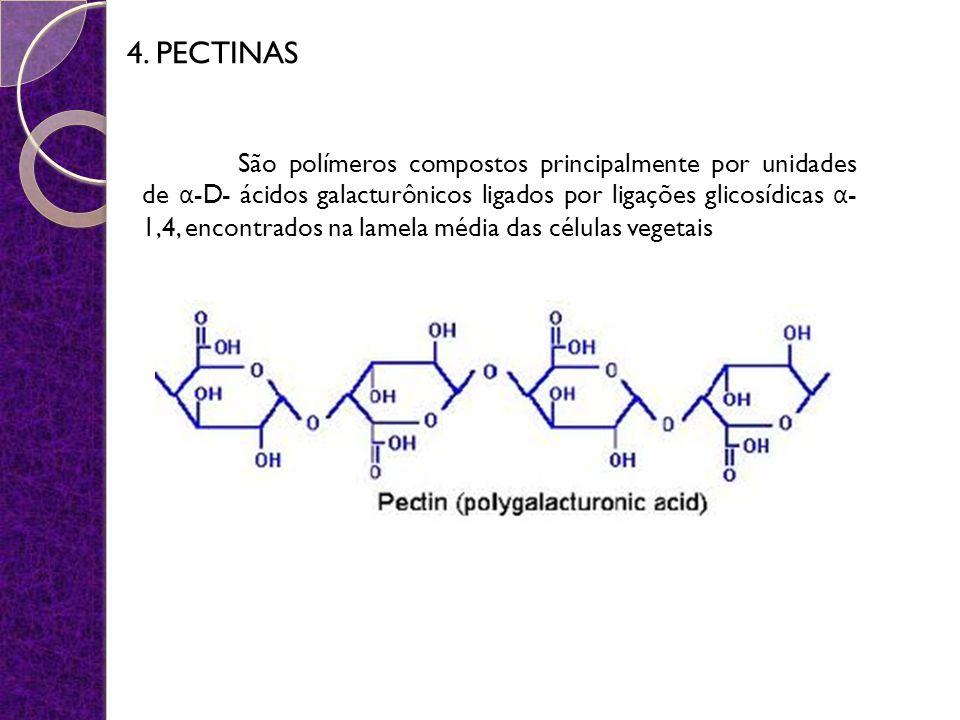 4. PECTINAS São polímeros compostos principalmente por unidades de α -D- ácidos galacturônicos ligados por ligações glicosídicas α - 1,4, encontrados