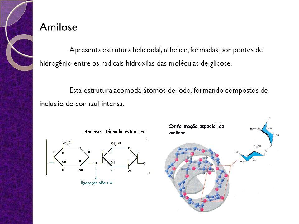 Amilose Apresenta estrutura helicoidal, α helice, formadas por pontes de hidrogênio entre os radicais hidroxilas das moléculas de glicose. Esta estrut