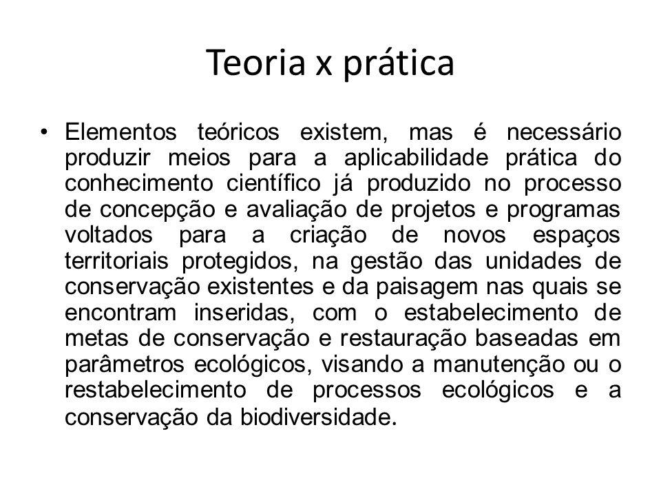 Teoria x prática Elementos teóricos existem, mas é necessário produzir meios para a aplicabilidade prática do conhecimento científico já produzido no