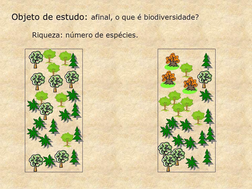 Riqueza: número de espécies. Objeto de estudo: afinal, o que é biodiversidade?