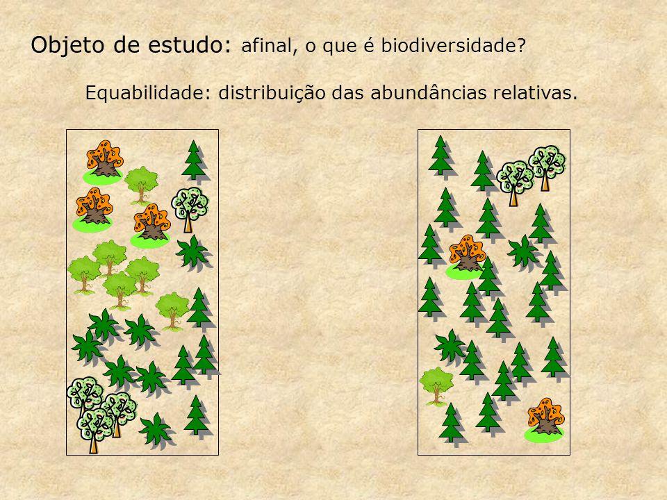 Índices de diversidade - Riqueza e equabilidade ao mesmo tempo