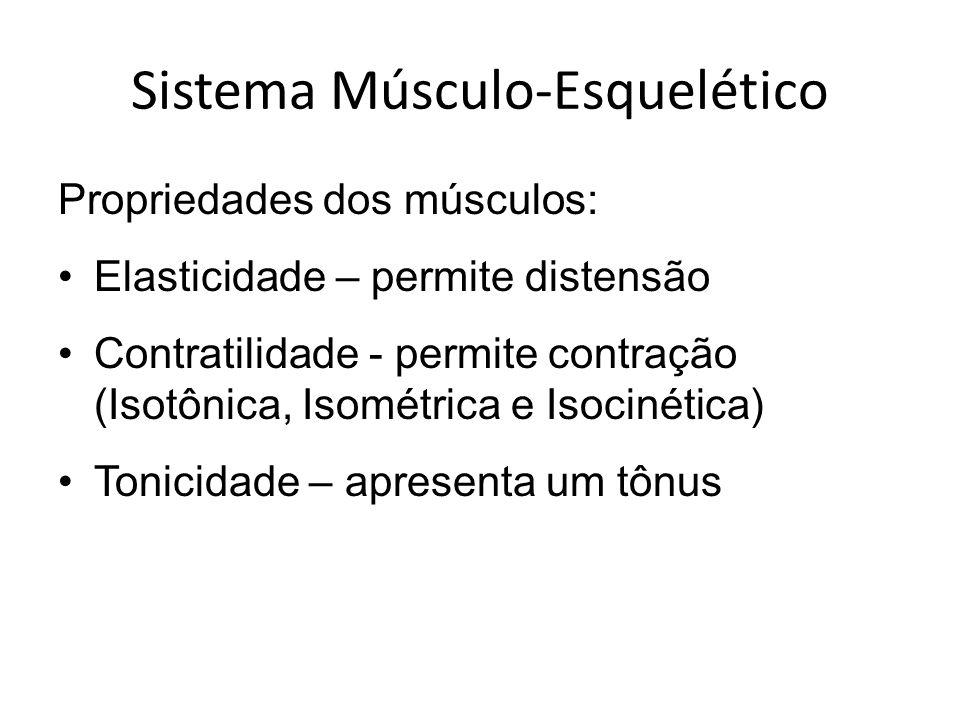 Sistema Músculo-Esquelético Propriedades dos músculos: Elasticidade – permite distensão Contratilidade - permite contração (Isotônica, Isométrica e Is