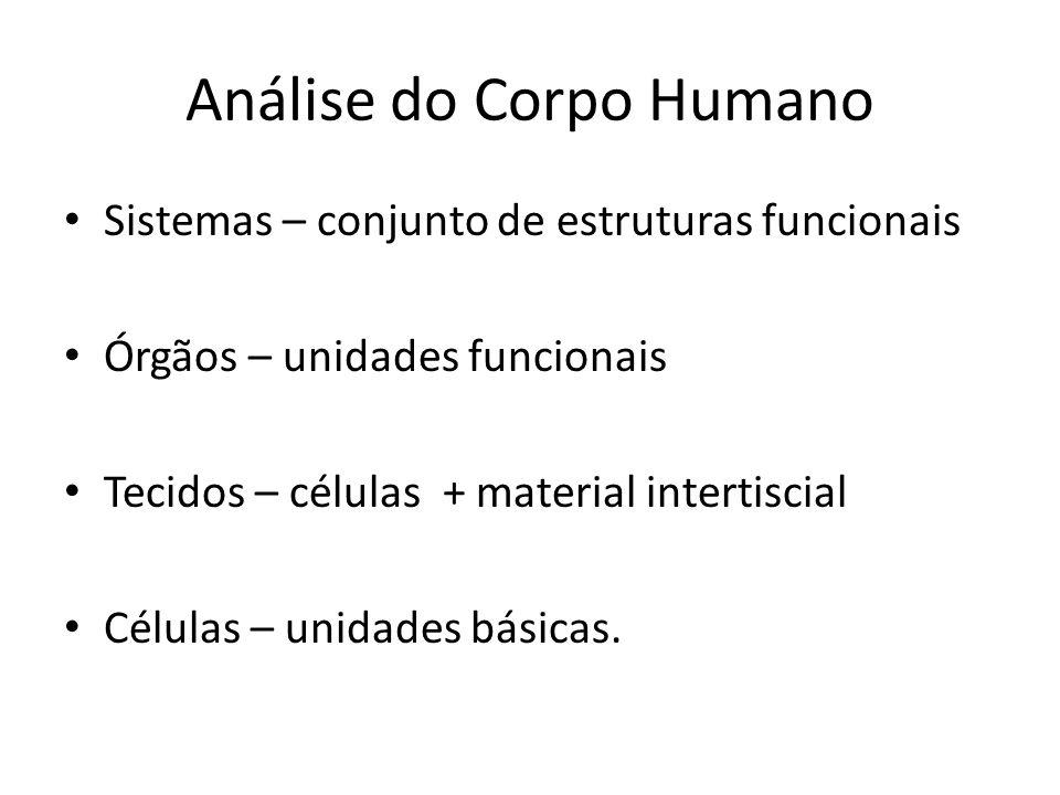 Análise do Corpo Humano Sistemas – conjunto de estruturas funcionais Órgãos – unidades funcionais Tecidos – células + material intertiscial Células –