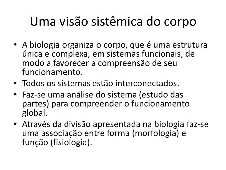 Uma visão sistêmica do corpo A biologia organiza o corpo, que é uma estrutura única e complexa, em sistemas funcionais, de modo a favorecer a compreen