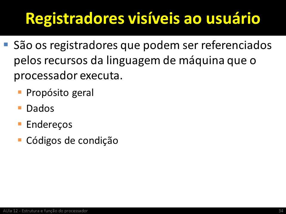 Registradores visíveis ao usuário São os registradores que podem ser referenciados pelos recursos da linguagem de máquina que o processador executa. P