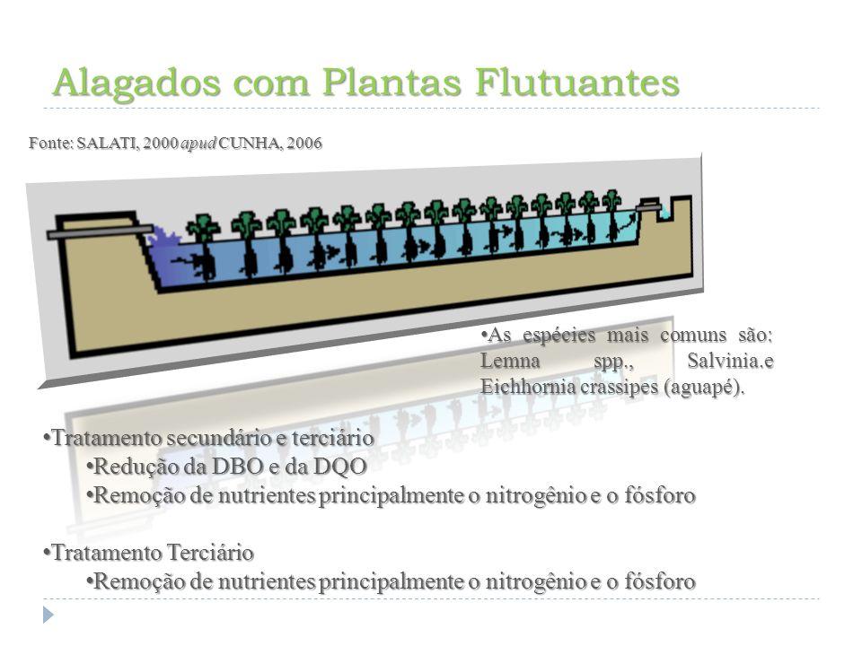 Alagados com Plantas Emergentes Fonte: SALATI, 2000 apud CUNHA, 2006 Este sistema de purificação hídrica, segundo SALATTI, utiliza planta que se desenvolvem tendo o sistema radicular preso ao sedimento e o caule e as folhas parcialmente submersos.