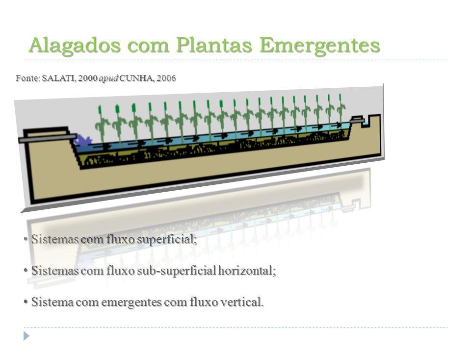Alagados com Plantas Fixas Submersas Fonte: SALATI, 2000 apud CUNHA, 2006 O principal uso potencial destas macrófitas submersas é o polimento de águas de esgoto após o tratamento secundário.
