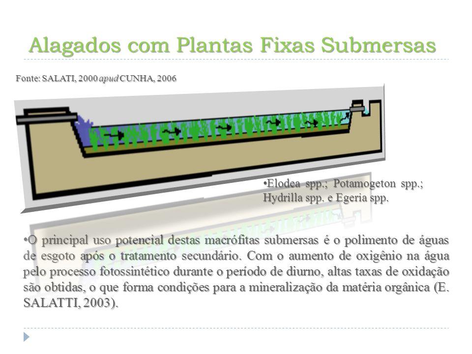 Alagados Construídos no Brasil Tratamento de Água Tratamento de Água SABESP (Carapicuíba e Baixo Cotia), SABESP (Carapicuíba e Baixo Cotia), SANEPAR SANEPAR ETA de Analândia ETA de Analândia Tratamento de Esgoto Tratamento de Esgoto ETE da Mineração Taboca (Vila de Pitinga –AM) ETE da Mineração Taboca (Vila de Pitinga –AM) ETE de Albrás Aluminio (Barcarena – PA) ETE de Albrás Aluminio (Barcarena – PA) ETE de Emaús (Ubatuba – SP) ETE de Emaús (Ubatuba – SP) ETE do SEMAE – Engenho Central I e II (Piracicaba - SP).