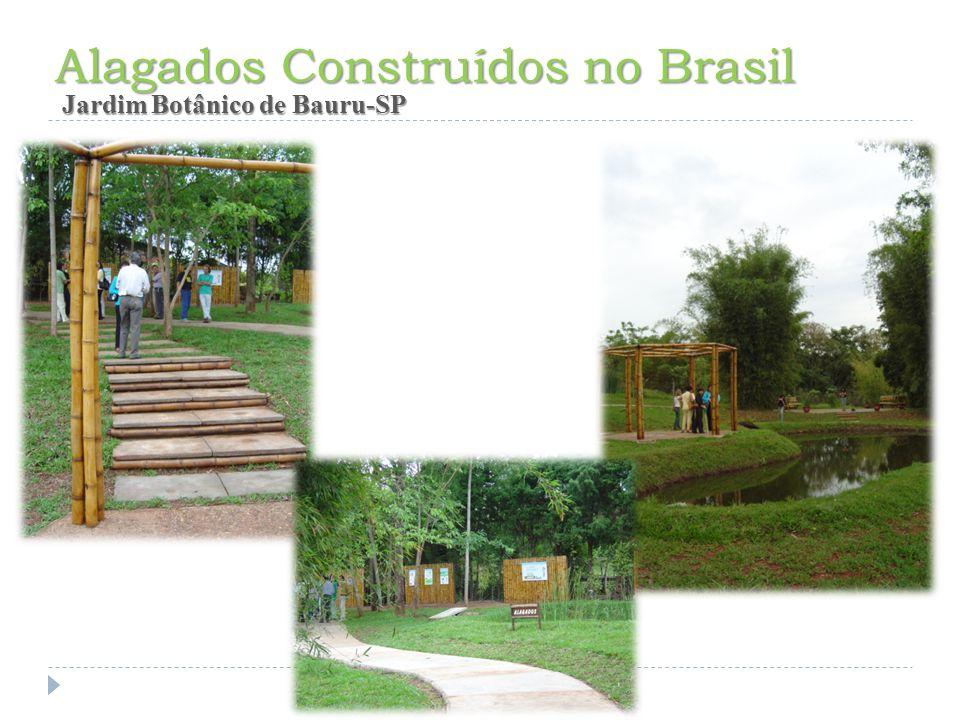 Alagados Construídos no Brasil Jardim Botânico de Bauru-SP Jardim Botânico de Bauru-SP