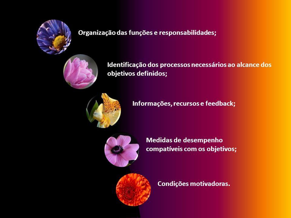 Organização das funções e responsabilidades; Identificação dos processos necessários ao alcance dos objetivos definidos; Informações, recursos e feedb