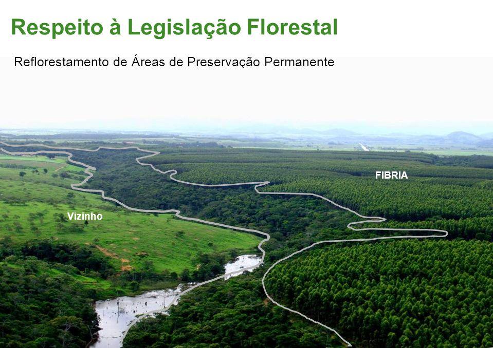 Respeito à Legislação Florestal FIBRIA Vizinho Reflorestamento de Áreas de Preservação Permanente