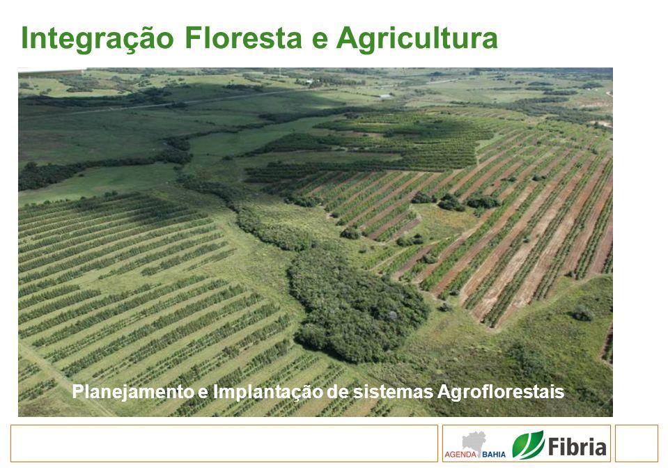 Integração Floresta e Agricultura Planejamento e Implantação de sistemas Agroflorestais