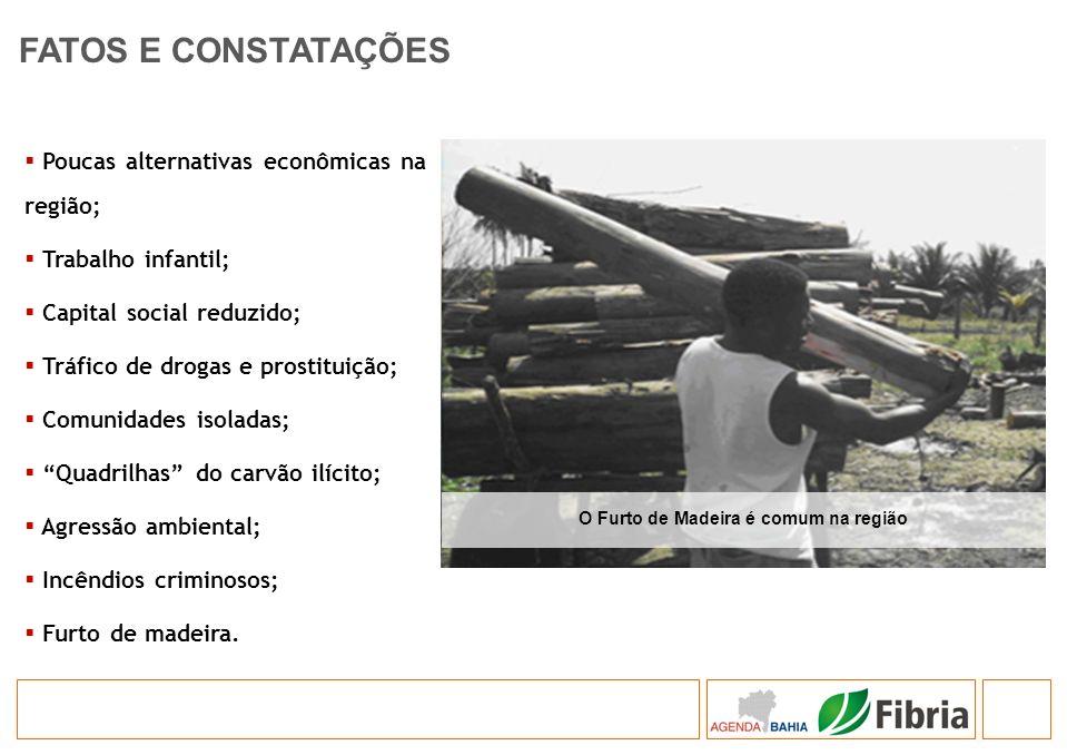 Poucas alternativas econômicas na região; Trabalho infantil; Capital social reduzido; Tráfico de drogas e prostituição; Comunidades isoladas; Quadrilh