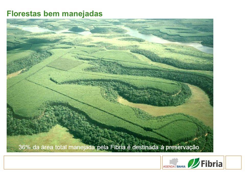 Florestas bem manejadas 36% da área total manejada pela Fibria é destinada à preservação