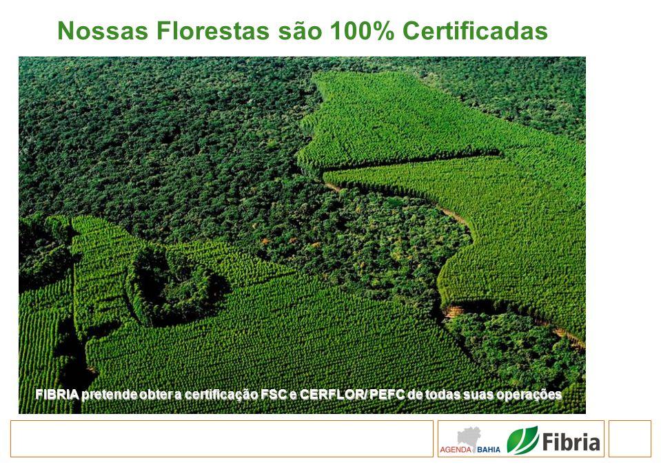 Nossas Florestas são 100% Certificadas FIBRIA pretende obter a certificação FSC e CERFLOR/ PEFC de todas suas operações