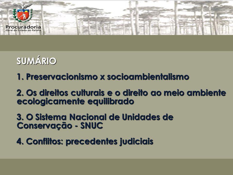 SUMÁRIO 1.Preservacionismo x socioambientalismo 2.