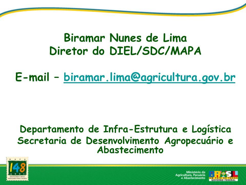Biramar Nunes de Lima Diretor do DIEL/SDC/MAPA E-mail – biramar.lima@agricultura.gov.brbiramar.lima@agricultura.gov.br Departamento de Infra-Estrutura e Logística Secretaria de Desenvolvimento Agropecuário e Abastecimento