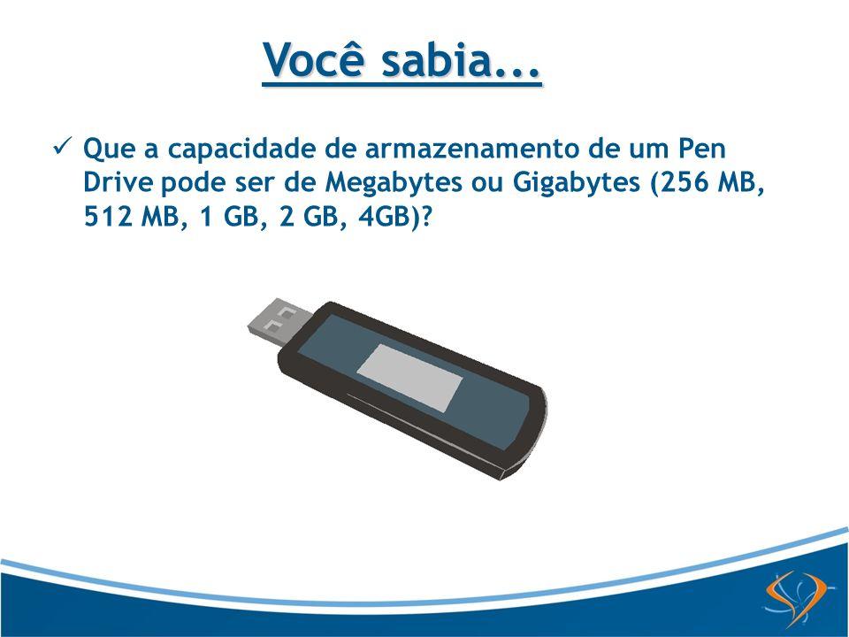 Que a capacidade de armazenamento de um Pen Drive pode ser de Megabytes ou Gigabytes (256 MB, 512 MB, 1 GB, 2 GB, 4GB).