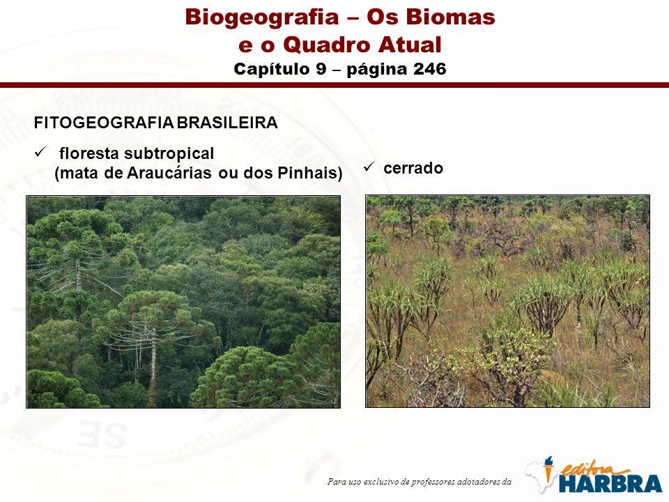 Para uso exclusivo de professores adotadores da Biogeografia – Os Biomas e o Quadro Atual Capítulo 9 – página 246 FITOGEOGRAFIA BRASILEIRA floresta subtropical (mata de Araucárias ou dos Pinhais) cerrado