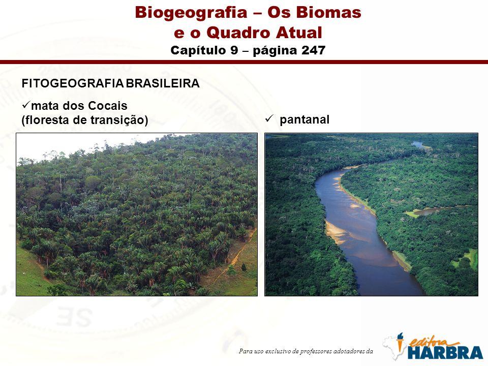 Para uso exclusivo de professores adotadores da Biogeografia – Os Biomas e o Quadro Atual Capítulo 9 – página 247 FITOGEOGRAFIA BRASILEIRA mata dos Cocais (floresta de transição) pantanal