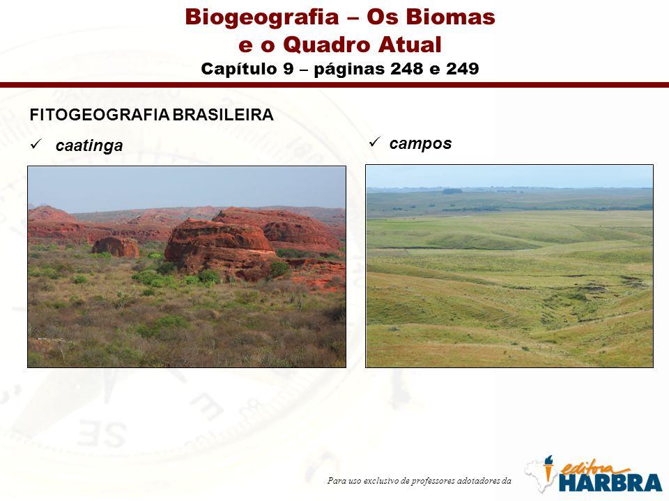 Para uso exclusivo de professores adotadores da Biogeografia – Os Biomas e o Quadro Atual Capítulo 9 – páginas 248 e 249 FITOGEOGRAFIA BRASILEIRA caatinga campos
