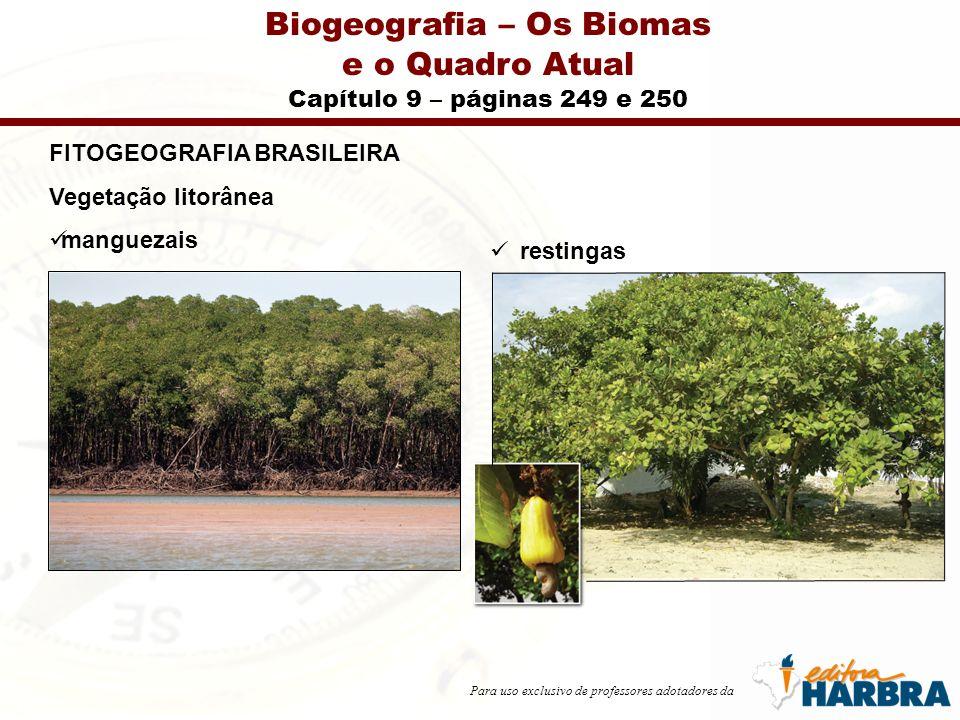 Para uso exclusivo de professores adotadores da Biogeografia – Os Biomas e o Quadro Atual Capítulo 9 – páginas 249 e 250 FITOGEOGRAFIA BRASILEIRA Vegetação litorânea manguezais restingas
