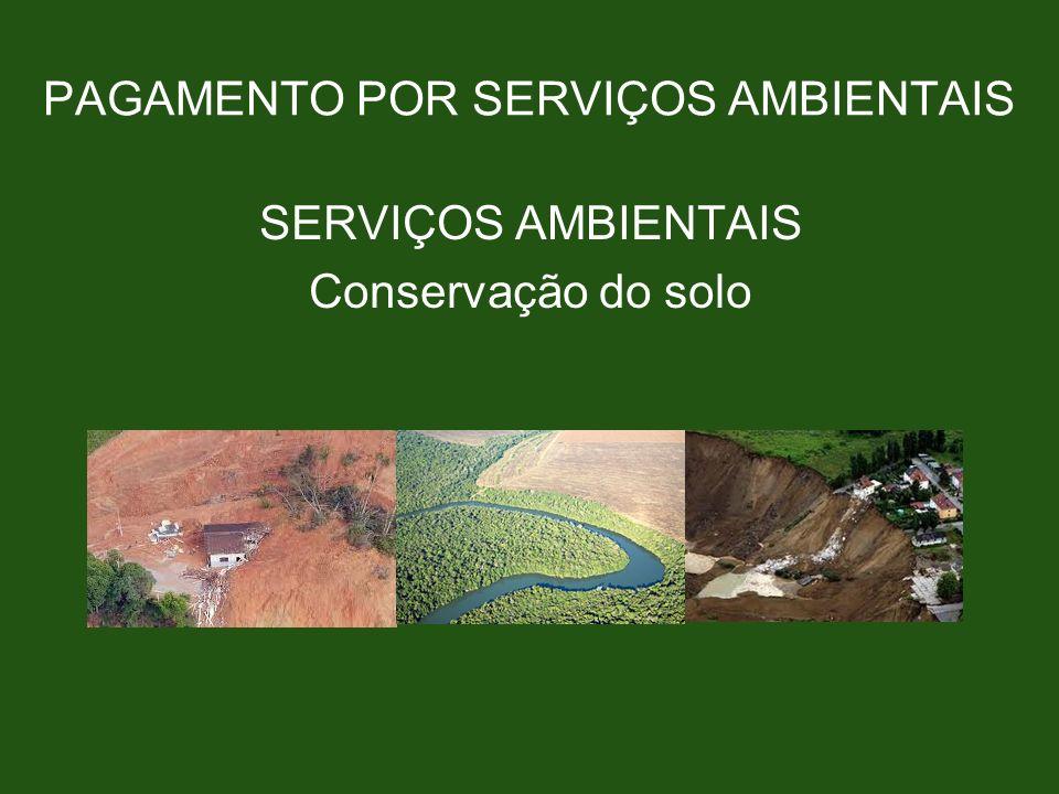 PAGAMENTO POR SERVIÇOS AMBIENTAIS SERVIÇOS AMBIENTAIS Conservação do solo