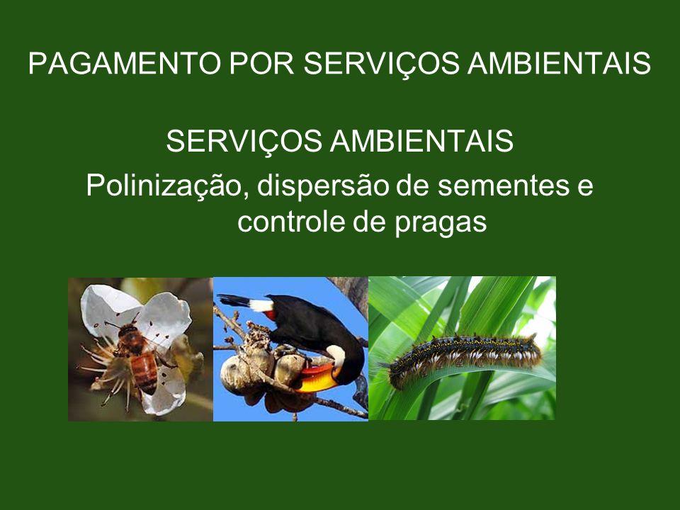 PAGAMENTO POR SERVIÇOS AMBIENTAIS SERVIÇOS AMBIENTAIS Polinização, dispersão de sementes e controle de pragas