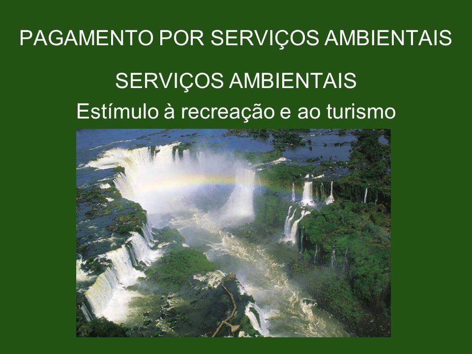 PAGAMENTO POR SERVIÇOS AMBIENTAIS SERVIÇOS AMBIENTAIS Estímulo à recreação e ao turismo