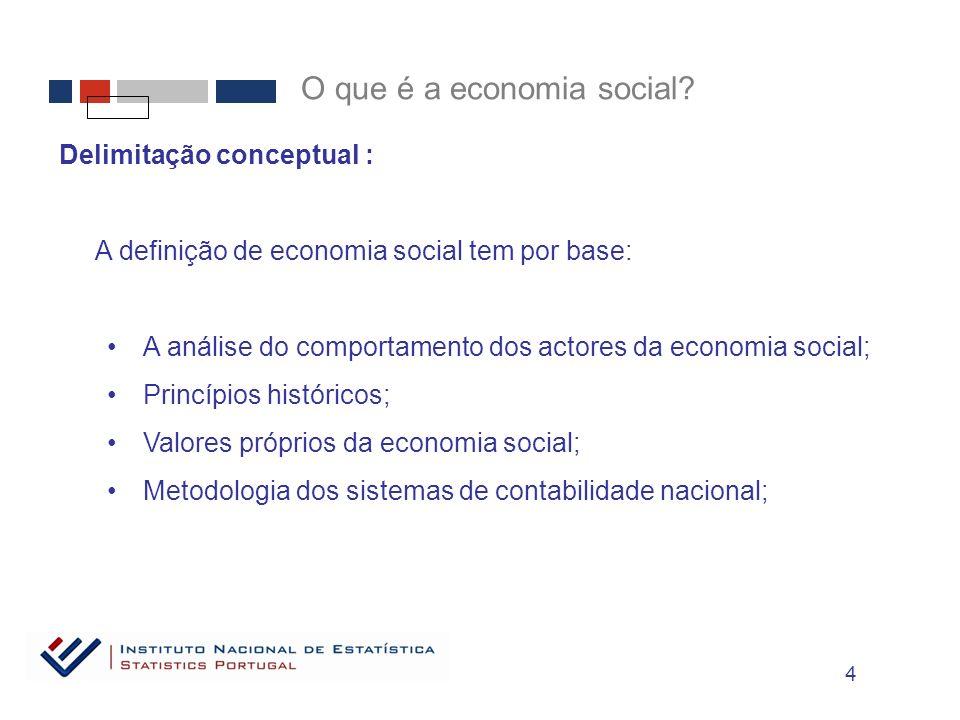 Delimitação conceptual : A definição de economia social tem por base: A análise do comportamento dos actores da economia social; Princípios históricos; Valores próprios da economia social; Metodologia dos sistemas de contabilidade nacional; O que é a economia social.