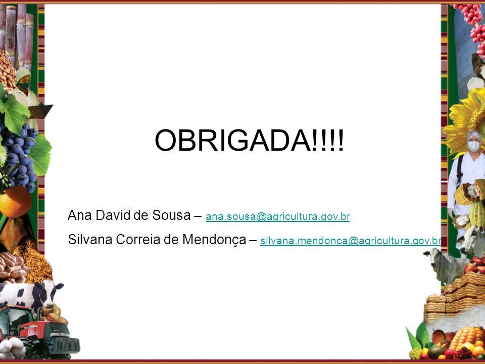 OBRIGADA!!!! Ana David de Sousa – ana.sousa@agricultura.gov.br ana.sousa@agricultura.gov.br Silvana Correia de Mendonça – silvana.mendonca@agricultura